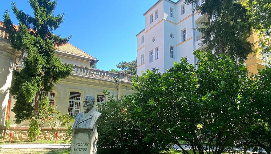 Korányi intézet A- B hall főbejárat Korányi Frigyes mellszobrával